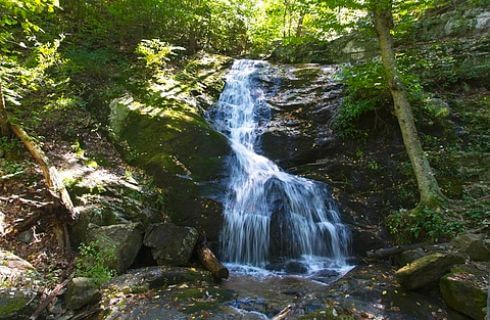 Waterfall over dark rocks in shaded wooded glen.