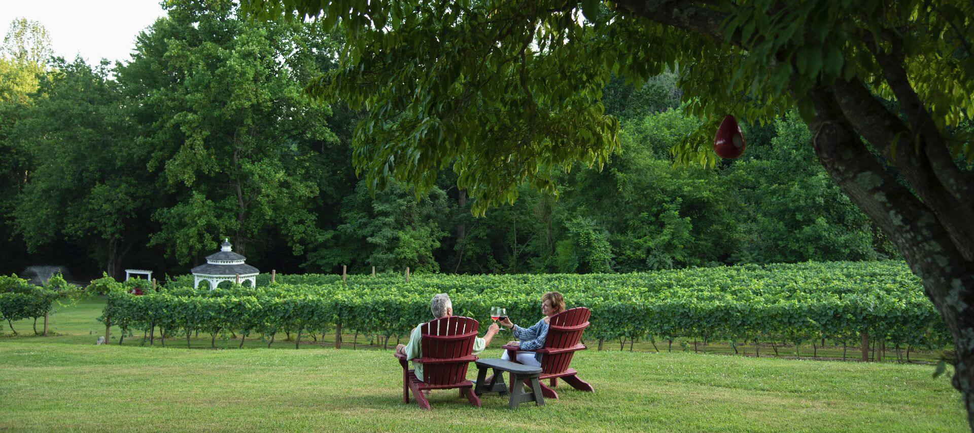 Couple sitting on brown Adirondack chairs on grassy area toasting wine glasses near vineyard